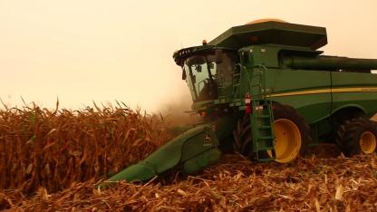 Harvest-still-2.Still002